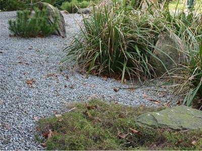 Our products minimise garden maintenance  - A P Hayden Bark - Bark, Mulch & Peat Moss Supplies, Ireland